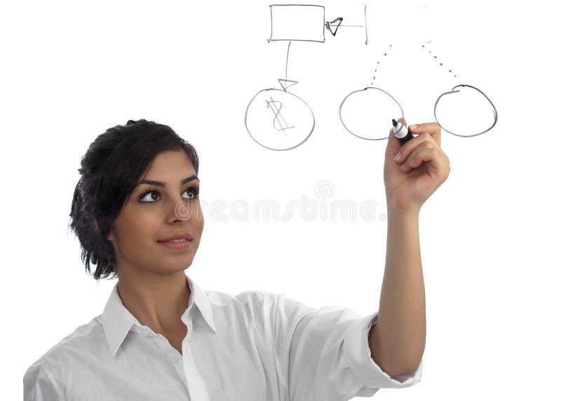 Mulher de negócio nova que apresenta sua idéia imagens de stock royalty free