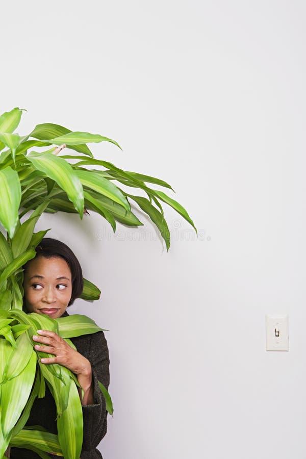 Mulher de negócios que esconde atrás da planta do escritório imagens de stock royalty free