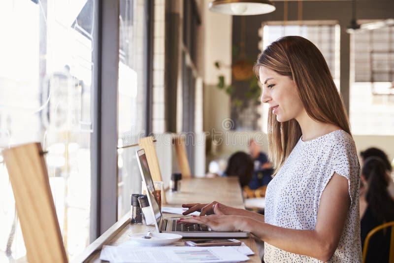 Mulher de negócios By Window Working no portátil na cafetaria foto de stock royalty free