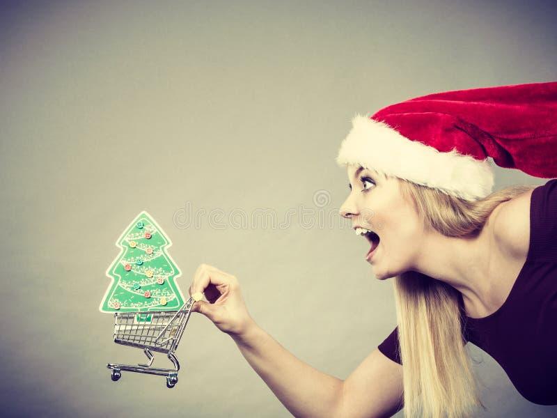 Mulher de Santa que guarda o carrinho de compras com presentes do Natal fotografia de stock royalty free