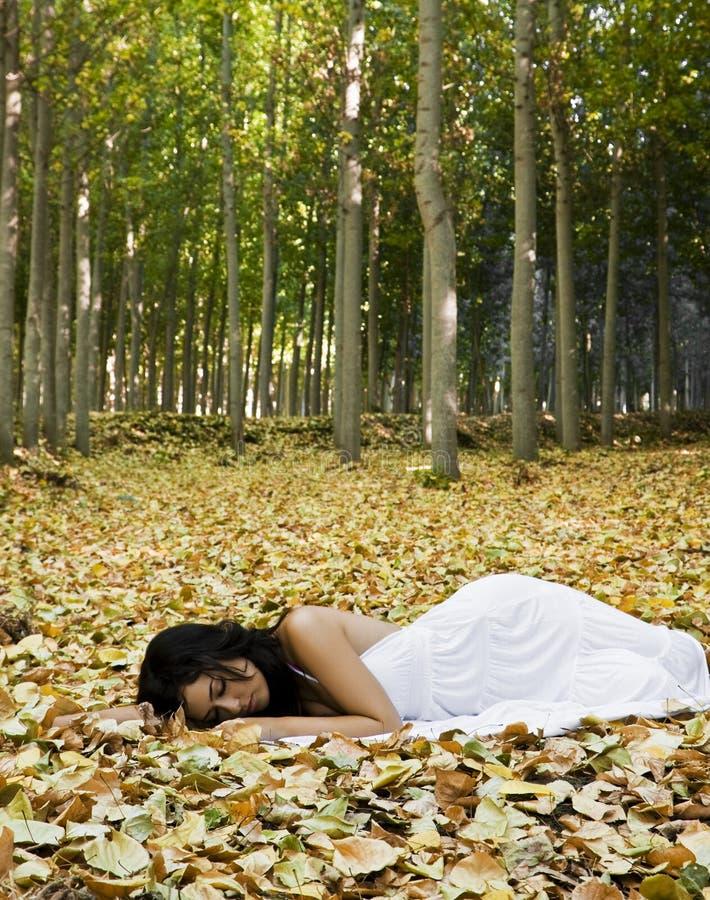 Mulher de sono bonita imagem de stock