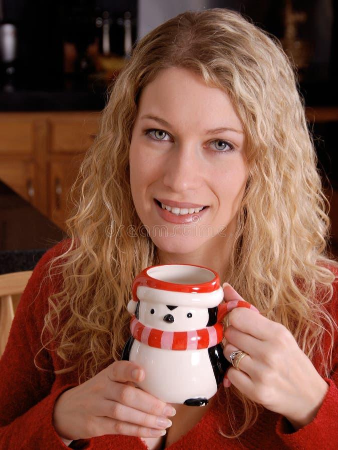 Mulher de sorriso do inverno foto de stock royalty free