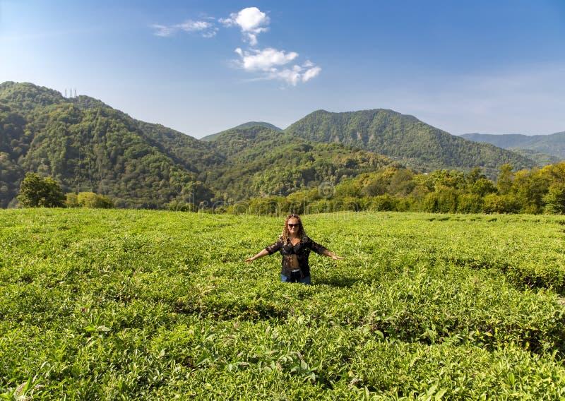 Mulher de sorriso em uma plantação de chá da montanha imagens de stock