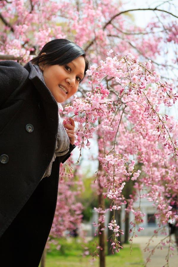 Mulher de sorriso sob a árvore de cereja imagem de stock