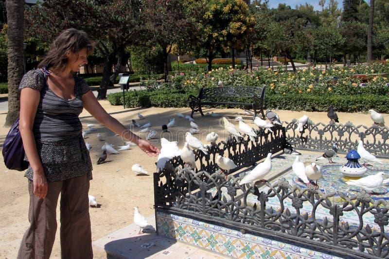 Mulher desconhecida  com os pombos no parque de Maria Louise em Sevilha foto de stock royalty free