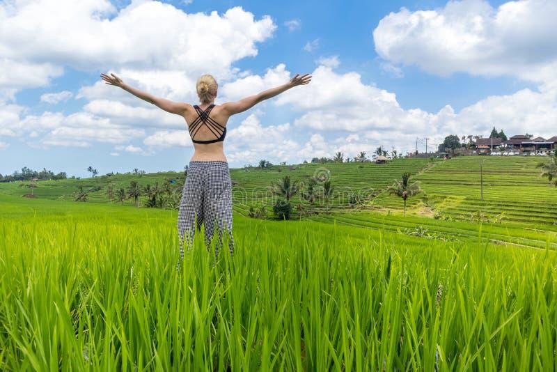 A mulher desportiva saud?vel relaxada, bra?os rised ao c?u, apreciando a natureza pura em campos verdes bonitos do arroz em Bali imagens de stock