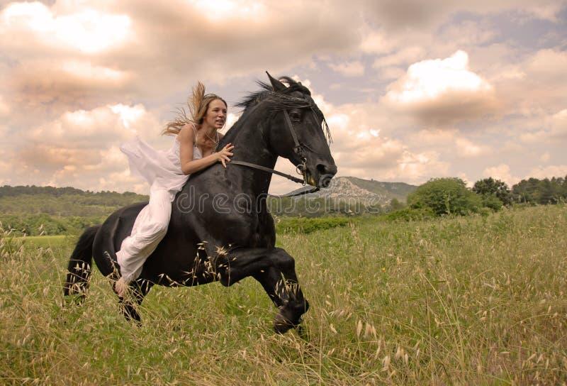 Mulher do casamento da equitação foto de stock royalty free
