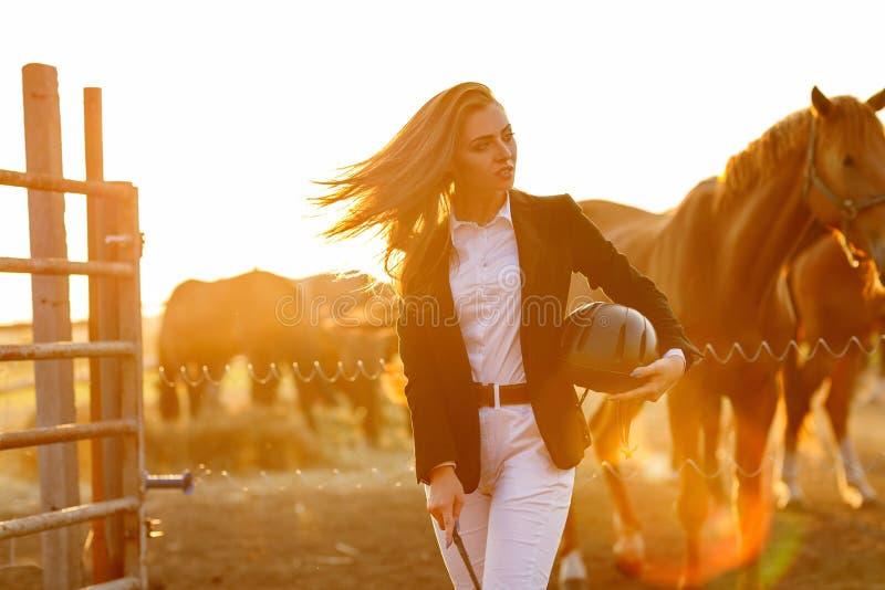 Mulher do cavaleiro com o chicote no por do sol foto de stock royalty free