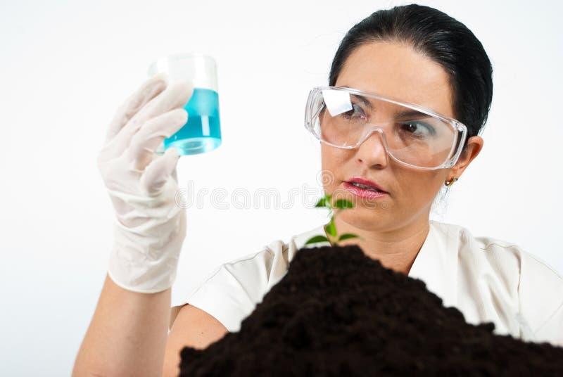 A mulher do cientista analisa o líquido azul fotos de stock royalty free
