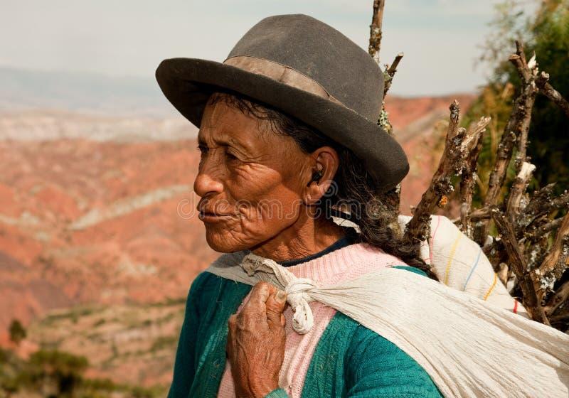 Mulher do fazendeiro, Ámérica do Sul foto de stock