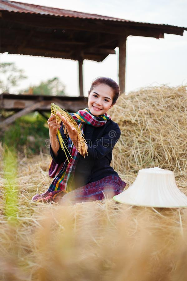 Mulher do fazendeiro que guarda um arroz com a palha no campo fotografia de stock