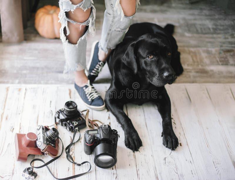 A mulher do moderno retarda-se perto das câmaras digitais com um Labrador, conceito, estilo de vida fotos de stock royalty free