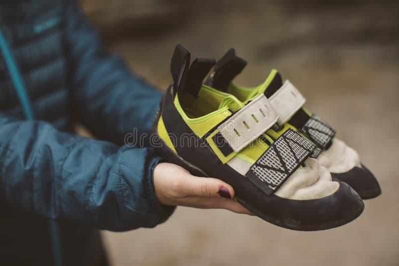Mulher do montanhista com suas sapatas de escalada colocadas em suas mãos foto de stock