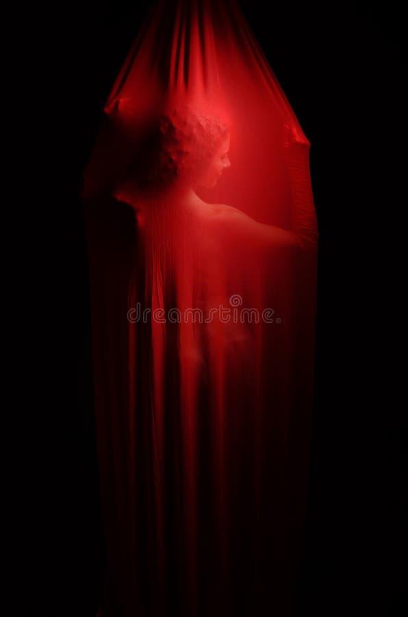 Mulher do Nude atrás do véu vermelho foto de stock