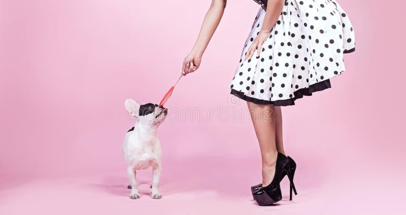 Mulher do Pinup com cão do pug imagem de stock