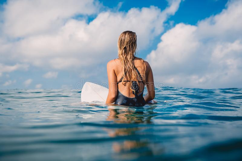 Mulher do surfista no roupa de banho com prancha Mulher com a prancha no oceano tropical imagem de stock