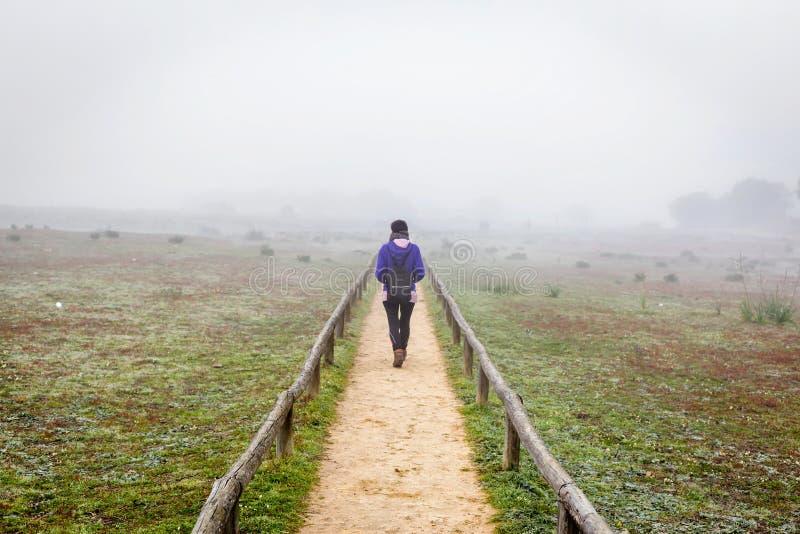 Mulher do viajante que anda apenas em um campo cercado pela névoa Apenas mulher da parte traseira que anda através da névoa na fl fotografia de stock royalty free