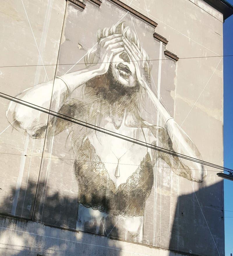 Mulher dos grafittis que wallpainting a parede despida imagem de stock