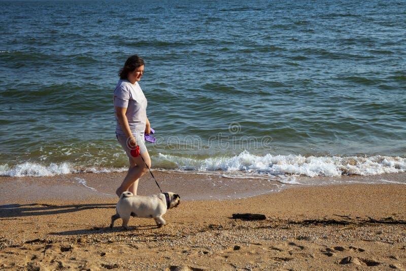 Mulher e caminhada do pug perto do mar imagem de stock