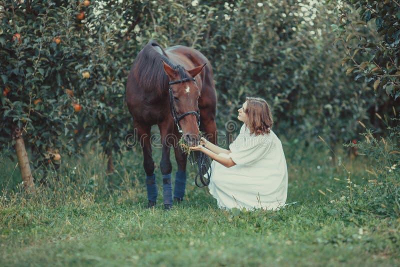 Mulher e cavalo fotos de stock royalty free