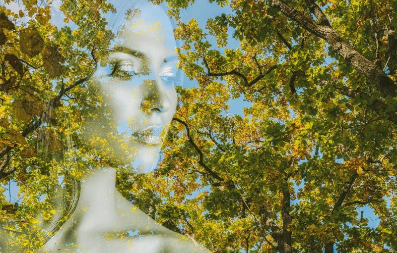 Mulher e floresta do outono foto de stock