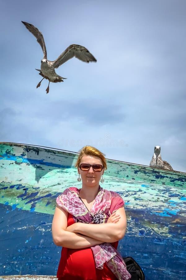 Mulher e gaivotas em um porto fotos de stock