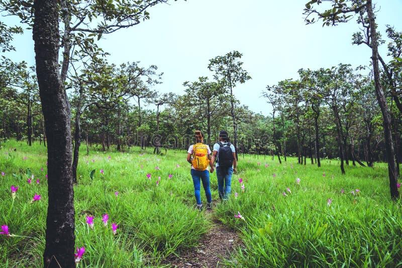 Mulher e homens adultos Natureza das viagens asiáticas Relaxe de viagem Fotografia Campo floral de pepino foto de stock