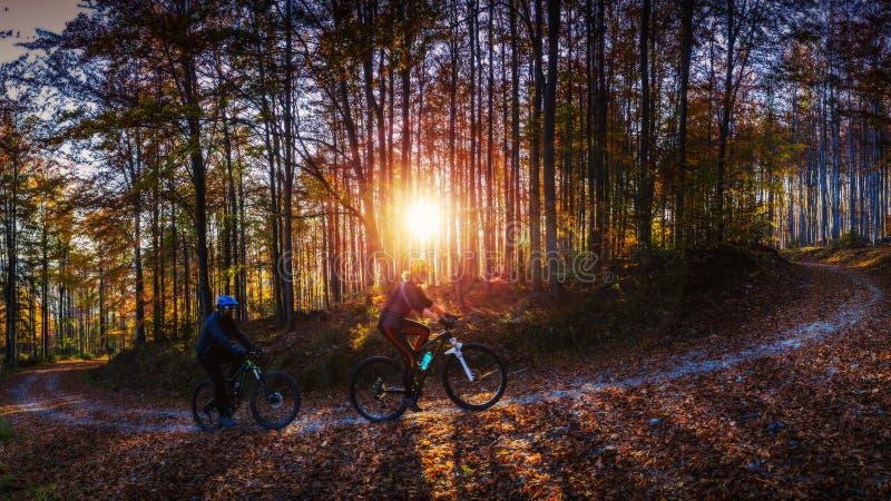 Mulher e homens de ciclagem que montam em bicicletas na floresta das montanhas do por do sol imagens de stock royalty free