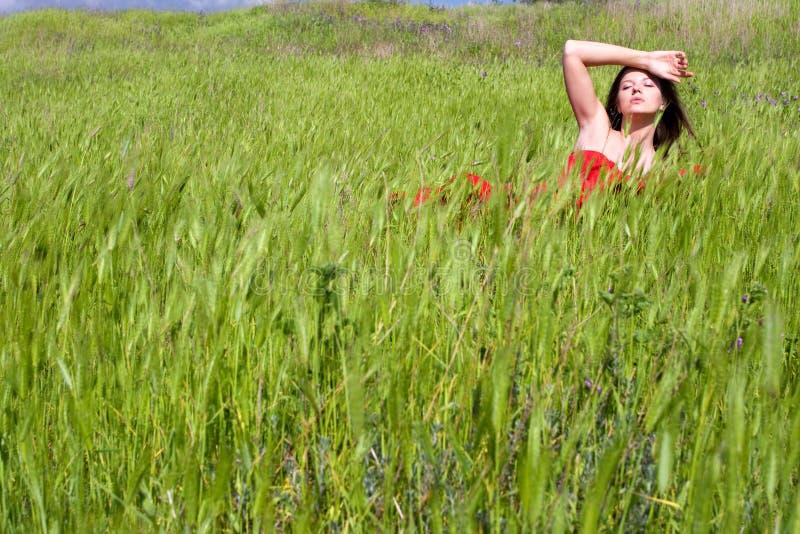 Mulher e natureza fotos de stock