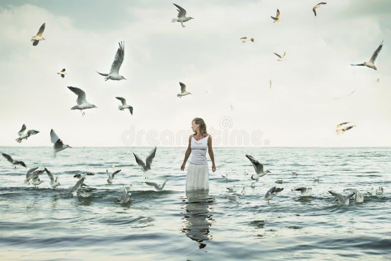 Mulher e seaguls bonitos na praia imagem de stock