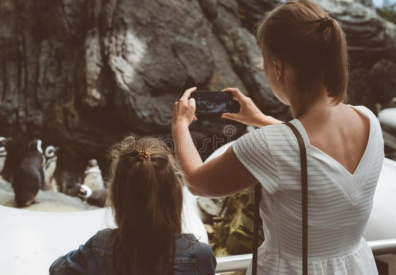 Mulher e sua filha que fazem fotos dos pinguins no jardim zoológico foto de stock