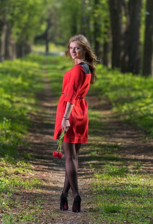 Mulher e tulipas bonitas fotos de stock royalty free