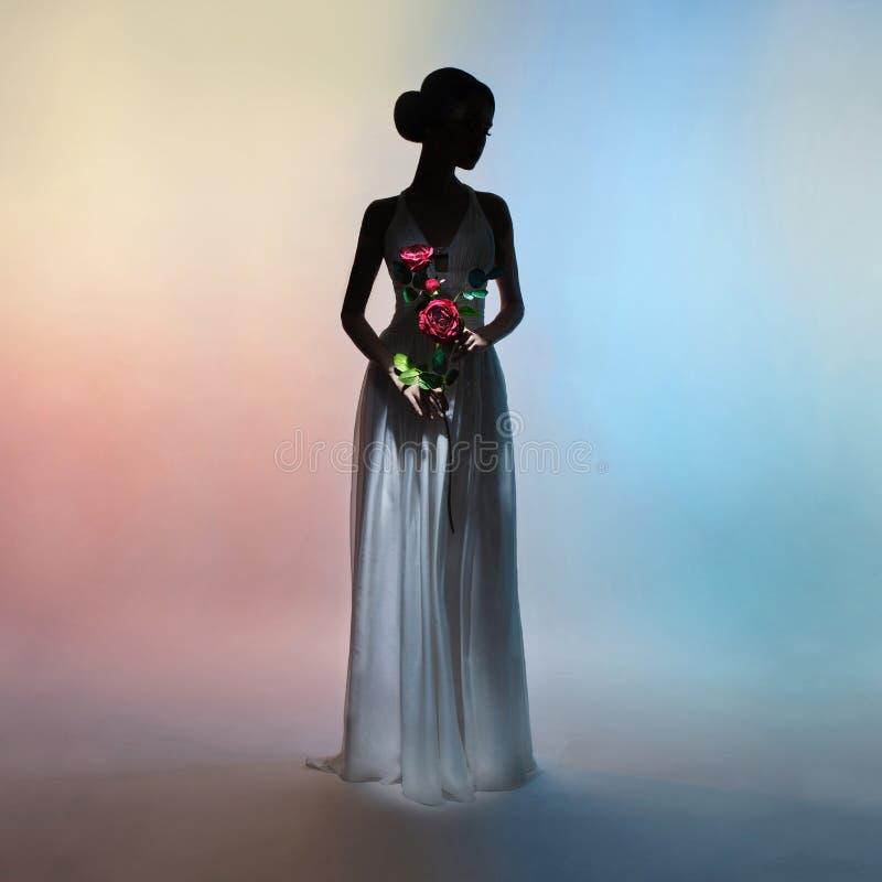Mulher elegante da silhueta no fundo das cores imagens de stock