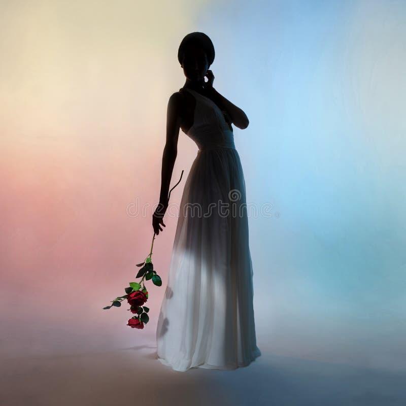 Mulher elegante da silhueta no fundo das cores imagens de stock royalty free