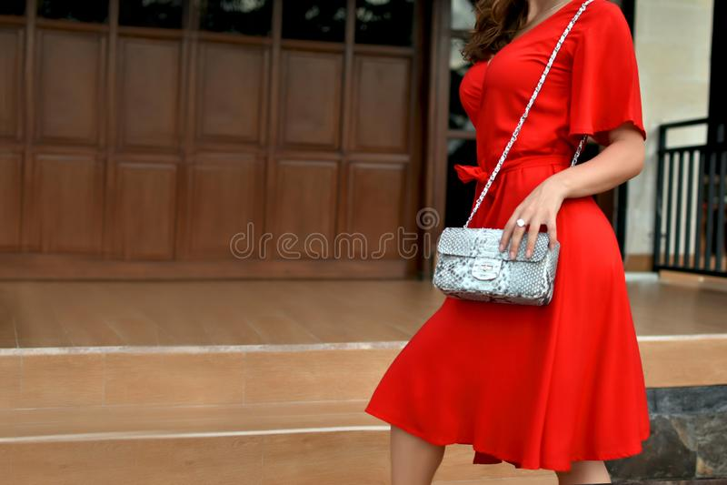Mulher elegante no vestido vermelho que guarda o saco de couro do pitão do snakeskin Feche acima da bolsa nas mãos de uma senhora imagem de stock royalty free