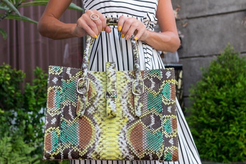 Mulher elegante que guarda o saco luxuoso do pitão do snakeskin Equipamento elegante Feche acima da bolsa nas mãos da senhora à m foto de stock