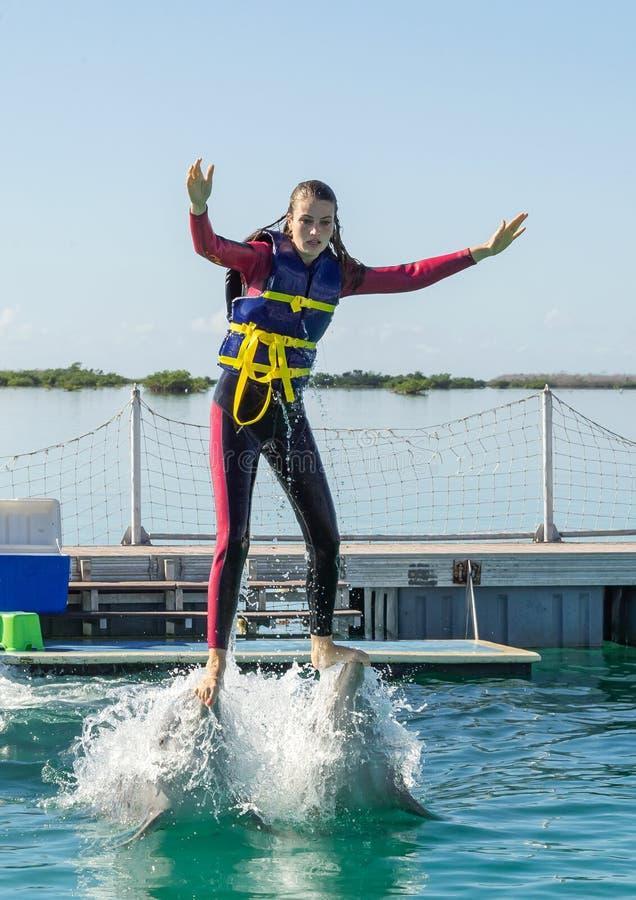 Mulher eliminada da ?gua por golfinhos, nadando com golfinhos foto de stock