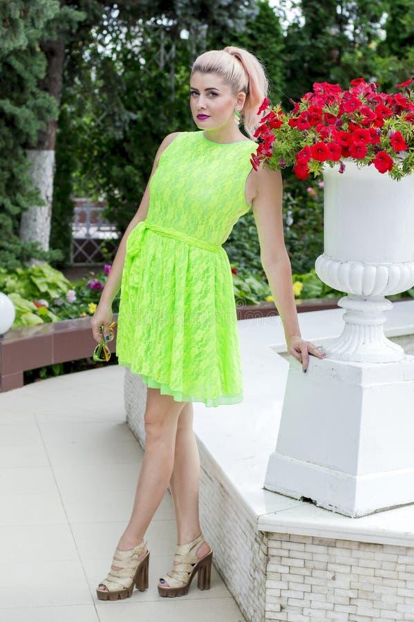 Mulher em claro - vestido e petúnia verdes foto de stock royalty free