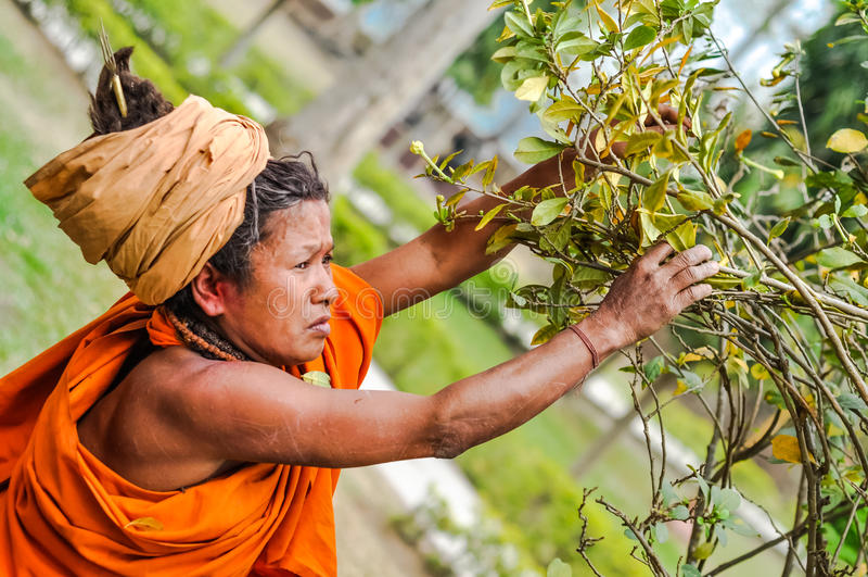 Mulher em Dibrugarh em Assam fotografia de stock royalty free