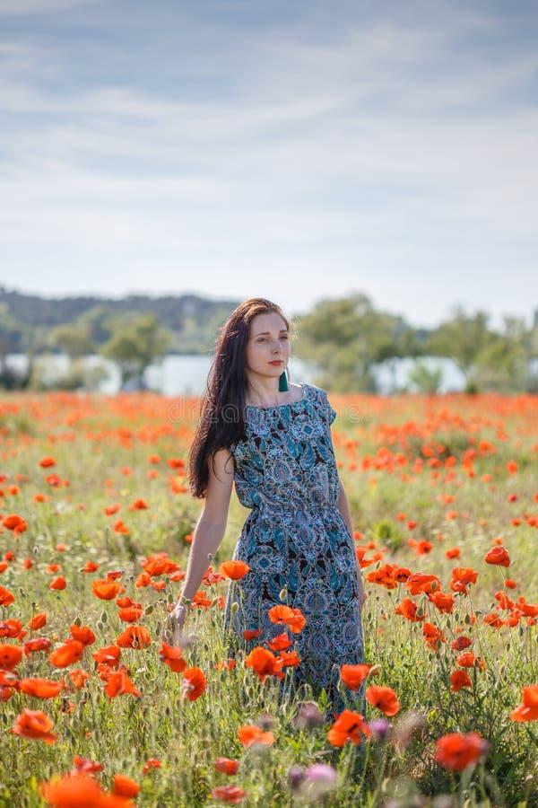 Mulher em sundress modelados no campo de flor do por do sol imagens de stock royalty free