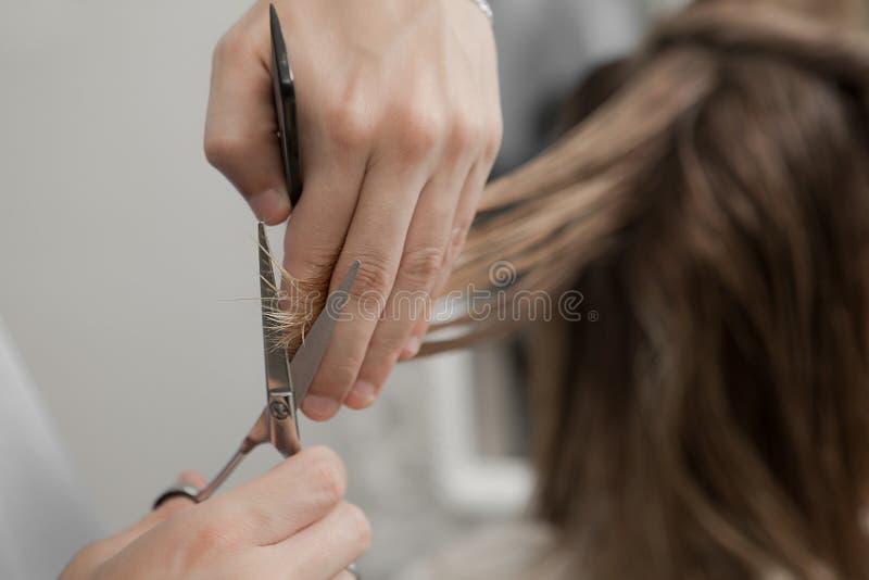 Mulher em um salão de beleza que obtém um corte do cabelo imagens de stock royalty free