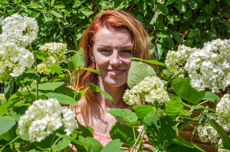 Mulher encantador nova com o sorriso longo do cabelo feliz no arbusto de rosas vermelhas fotos de stock