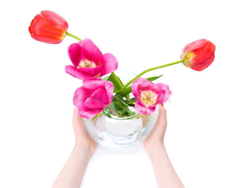 A mulher entrega o vaso da terra arrendada com flores fotografia de stock