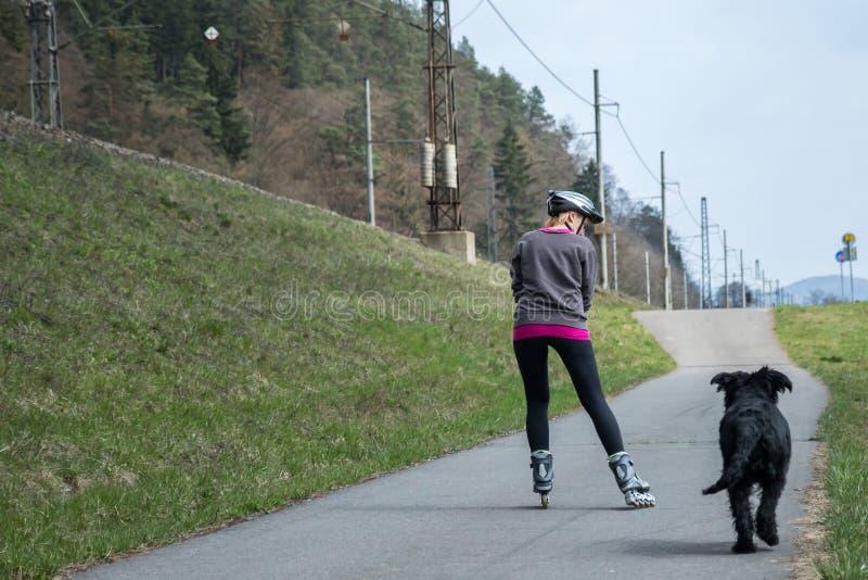 A mulher está patinando em rollerblades ao lado de seu cão fora foto de stock