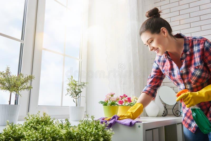 A mulher faz a limpeza imagens de stock royalty free