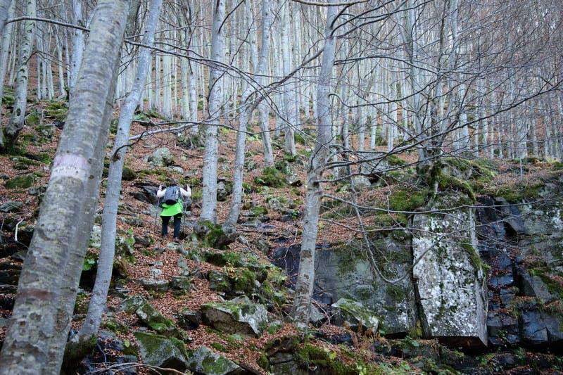 A mulher faz trekking nas montanhas foto de stock
