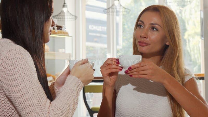 Mulher feliz bonita que aprecia o café com seu melhor amigo, conversando alegremente foto de stock