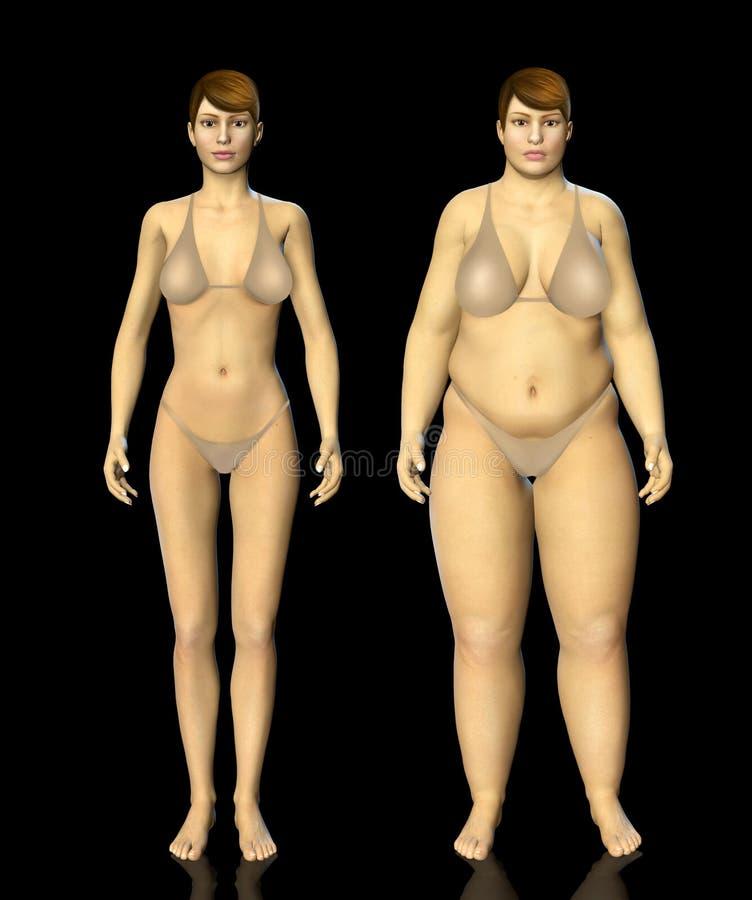 mulher gorda e fina de 3d antes e depois do conceito ilustração royalty free