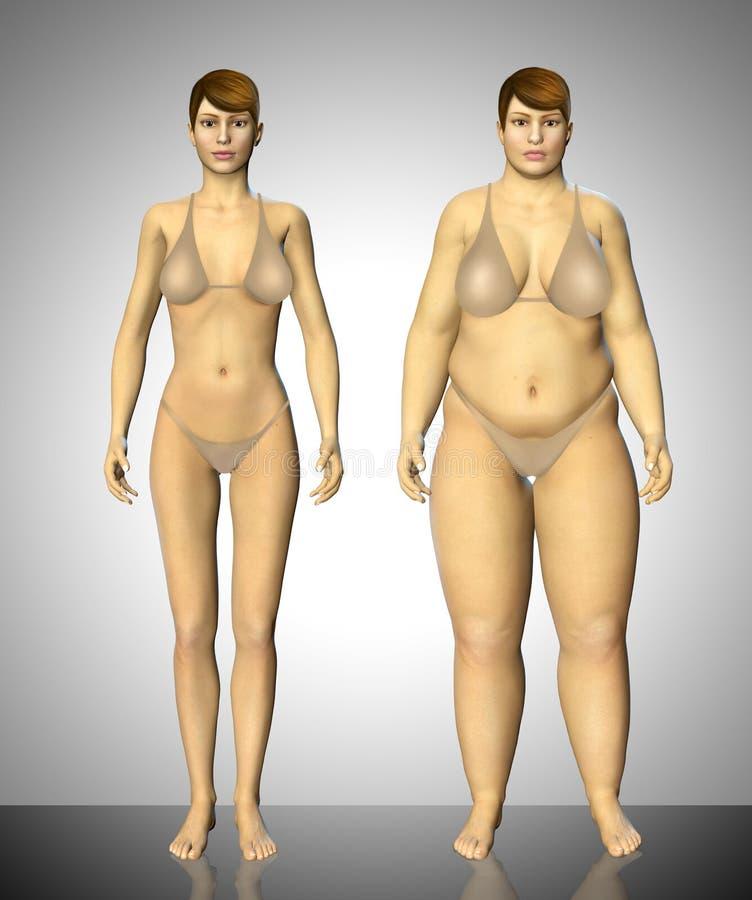 mulher gorda e fina de 3d antes e depois do conceito ilustração do vetor