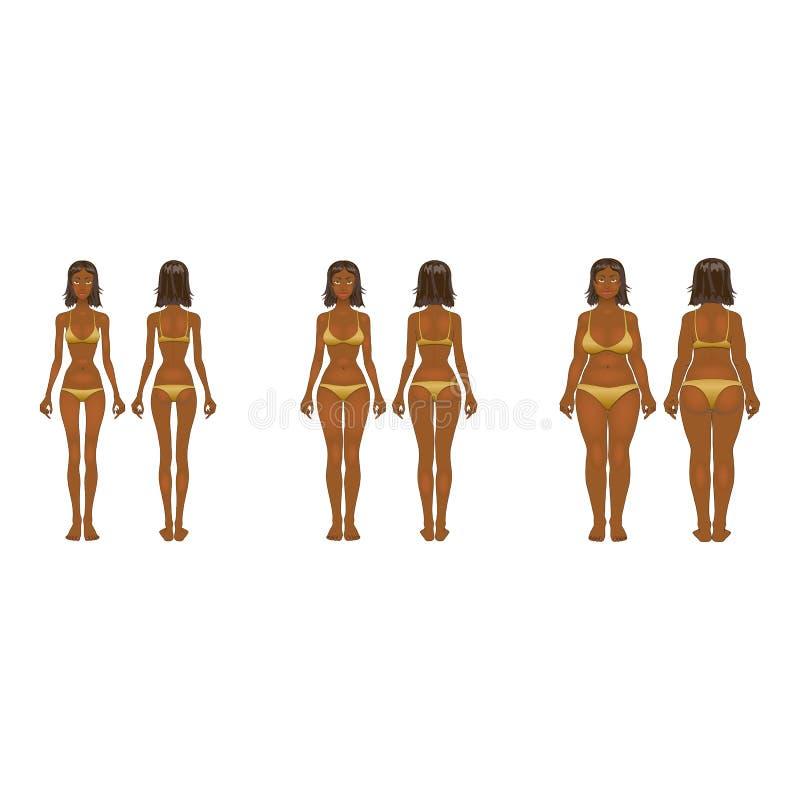 Mulher gorda e fina, ilustração do vetor, normal, corpo da anorexia ilustração do vetor